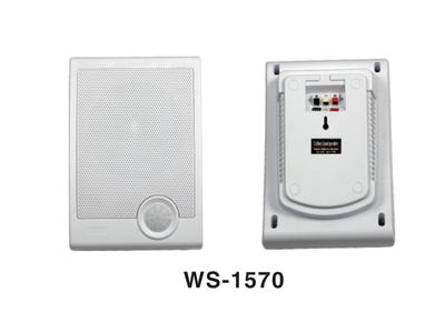 型號:WS-1570室內壁挂音箱